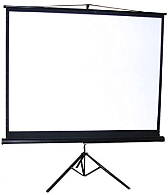 Iview Tripod Screen with Floor Stand 240x240cms